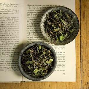 Pai Mu Tan - Weisser Tee